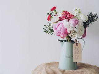 Flowersinpitcherphoto-1452827073306-6e6e661baf57